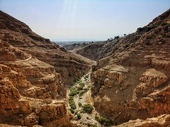 Walking through the Judean Desert, from St. George Khoziba monastery to Jericho