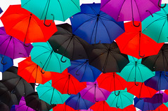 "Parapluies du FIL • <a style=""font-size:0.8em;"" href=""http://www.flickr.com/photos/52785227@N02/48510242697/"" target=""_blank"">View on Flickr</a>"
