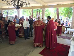 "2019 Blessing of the Grapes • <a style=""font-size:0.8em;"" href=""http://www.flickr.com/photos/124917635@N08/48572488082/"" target=""_blank"">View on Flickr</a>"