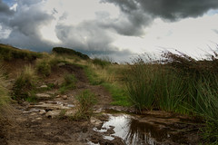 "The Path to ""Drinkwaters"", Withnell Moor, Lancashire"