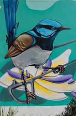 'Blue wrens' by Janne Birkne