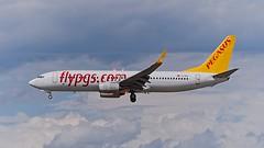 TC-IZG: Pegasus Boeing B737-800