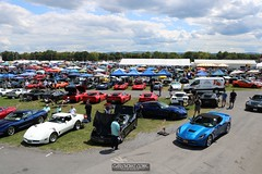 Corvettes_at_ Carlisle_20190824_0088
