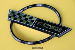 Corvettes_at_ Carlisle_20190824_0046