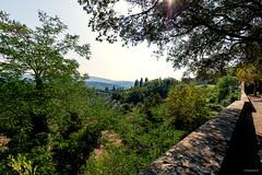 Toscane / Arezzo / Sept 2019