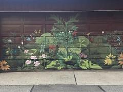 Laneway grafitti