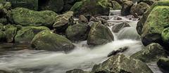 Te Wairere Stream
