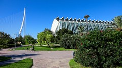El Pont de l'Assut de l'Or / Museu de les Ciències / Ciutat de les Arts i les Ciències / Valencia