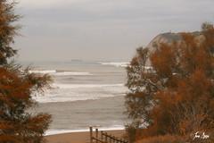 La mejor música...el sonido del mar, el de las hojas secas y el de la respiración.
