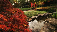 Karlsruhe Japanse Garden in Autumn