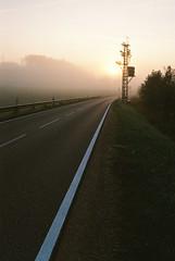 Foggy Road II
