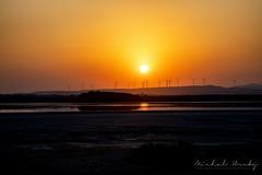Sunset over Salt lake - Larnaca