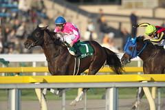 Wonder Lider -Musashino Stakes (G3)