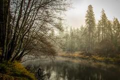 Early Morning Fog over the Applegate River