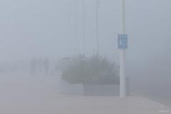 Misty Beach / Koksijde