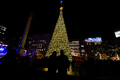 Macy's Christmas tree is lit up at Union Square in San Francisco, California, United States on December 7, 2019. (Photo by Yichuan Cao/Sipa USA)