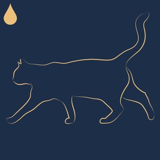 必聽Podcast 推薦-貓子的理財之聲