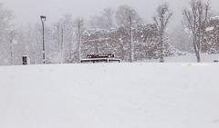 """Hidden with snow and snow! - """"Peidetud tuisu-lumega !!"""" lumine❄️❄️ Viljandi - 26.02.2020"""