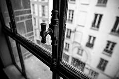 Les oiseaux chantent par amour (Open your window!)