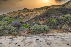 Crystal Cove - California Sky