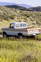 ICON_Ford_70_Reformer_R34_Drvr_Field_Of_Flowers_Tall_Format_IMG_9867
