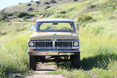 ICON_Ford_Reformer_Nose_Flower_Field_Dirt_Trail_ALT_IMG_1682