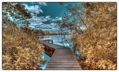 Bolam Lake