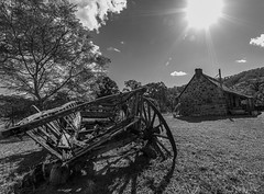 Stone House buggy