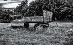 Almost decayed cart