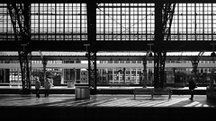 Cologne Main Station 08