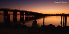 Forster Bridge 77997 s