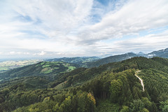 Alpine Foreland