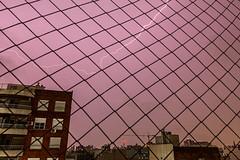 Tras la ventana.jpg