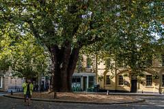 Abbey Green, Bath, England.