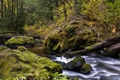 Big Creek, towards the ravine