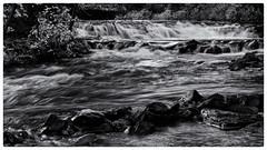 Ocqueoc Falls, B&W