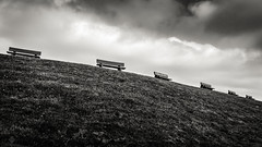 Benches on the Dike