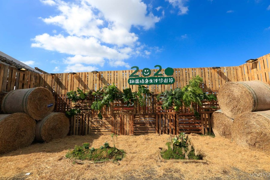 [桃園旅遊]2020桃園綠色生活悠遊節|蘆竹坑口社區彩繪新增有趣壁畫~一起到戶外賞花海地景落羽松 @VIVIYU小世界