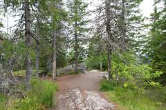 Koli National Park