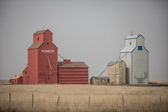 2020-09-18-wheat-fields--elliot-negelev--0002