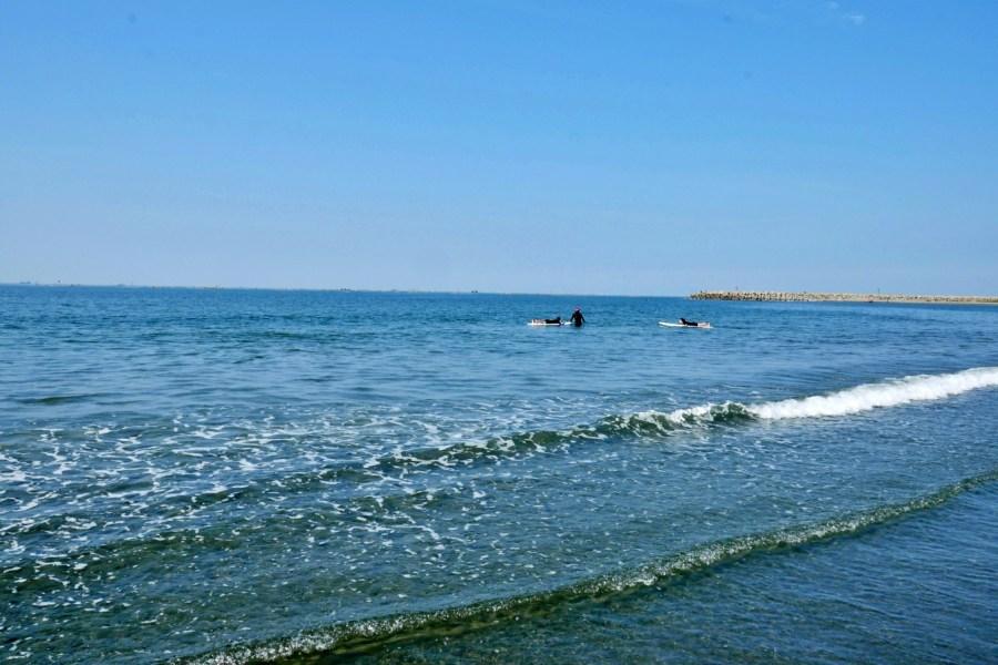 [台南景點]漁光島|億載金城附近浪漫海灘秘境~碧海藍天月牙灣沙灘與迷霧森林美景如畫世外景點 @VIVIYU小世界