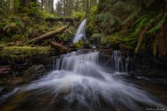 Whirling Dervish Falls