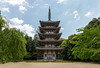 Photo:Daigoji temple, Kyoto By