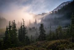 Klapatche Fog
