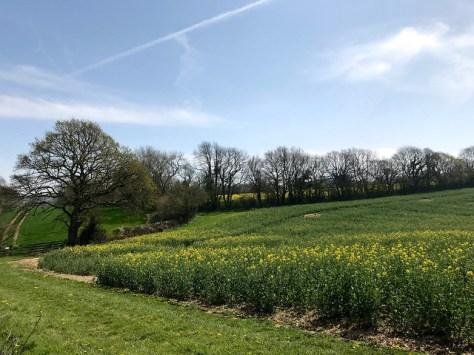 Avebury Walk