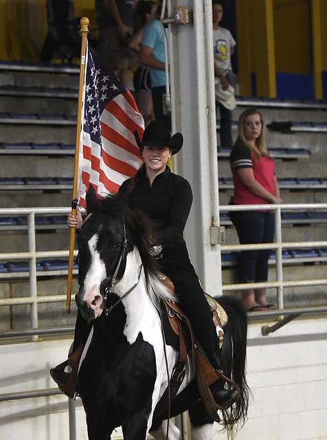 Appalachian Horse Revival Brings Variety Of Breeds To Msu