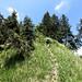 Sienspitze Luguntenkopf 2019 06 17