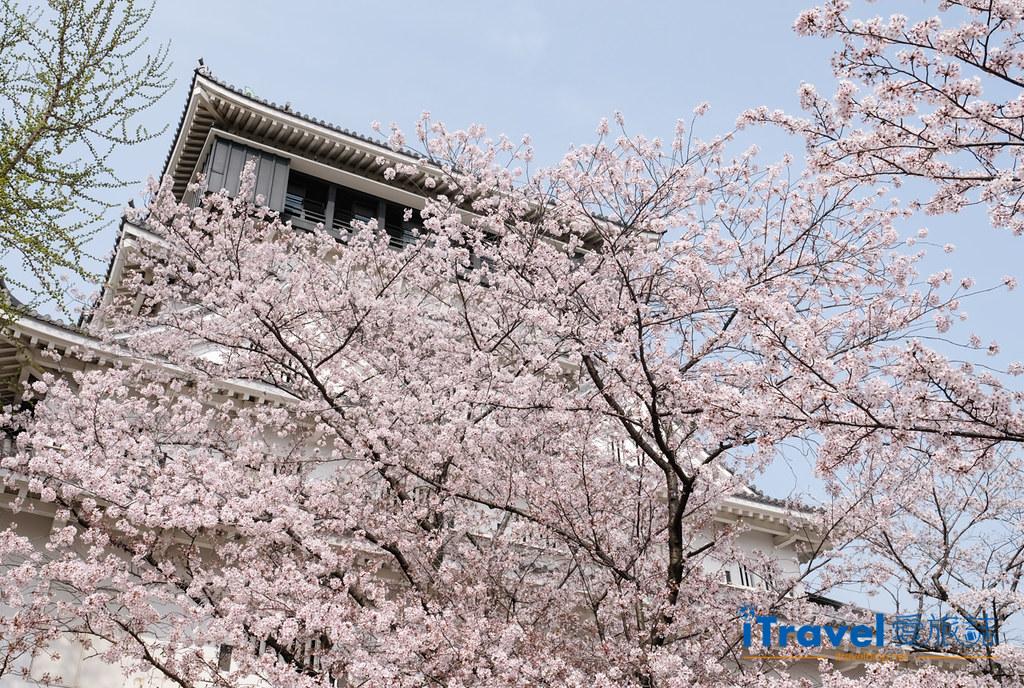 福岡小倉城 (1)