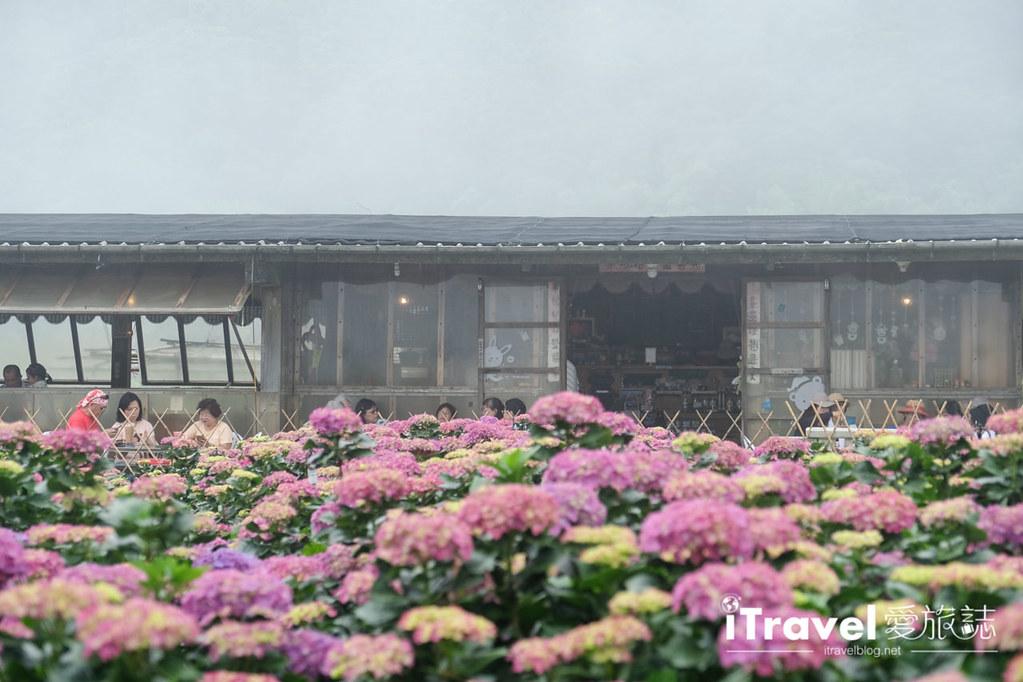 頂湖財福繡球花園 Jai Fu Garden (72)