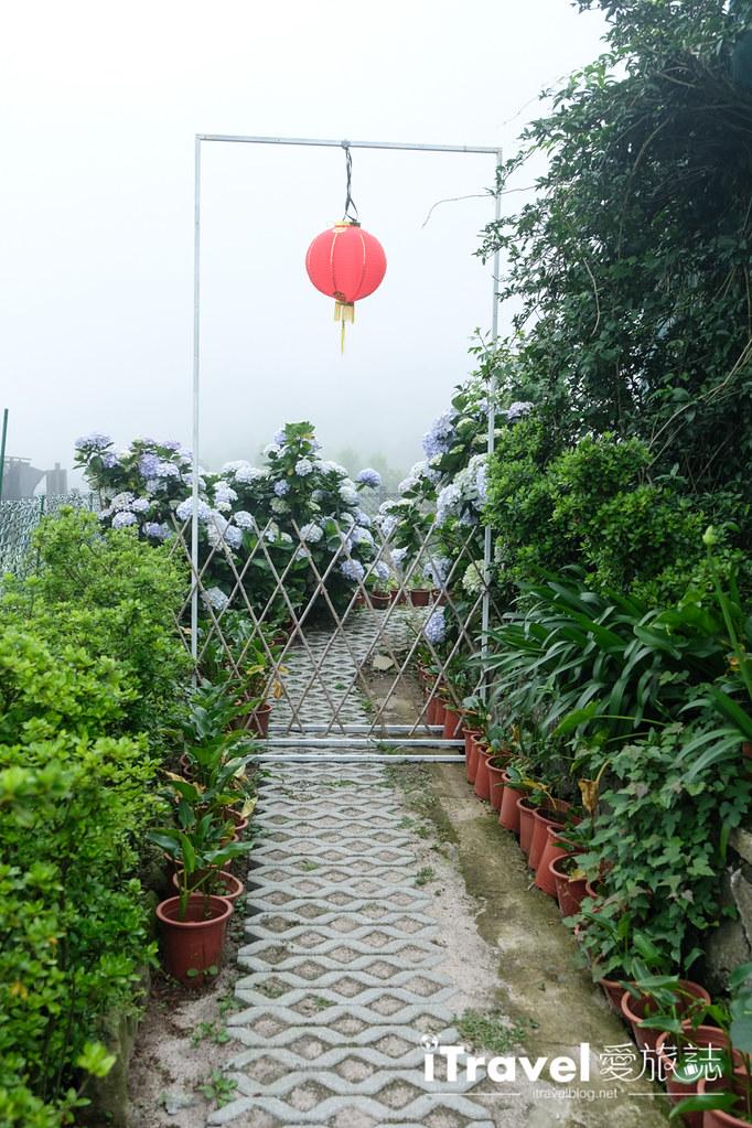 頂湖財福繡球花園 Jai Fu Garden (61)
